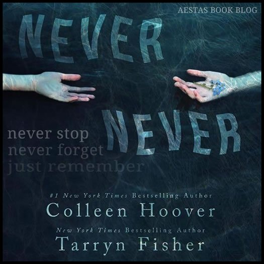 NEVER NEVER colleen hoover tarryn fisher