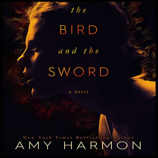 THE BIRD AND THE SWORD promo